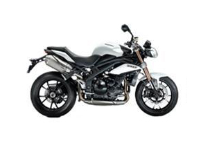 Speed Triple Scale Model